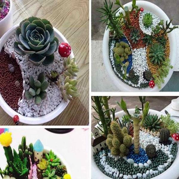 9 estilo miniatura jard n terrario hongo seta decoraci n for Jardin 43 rio gallegos