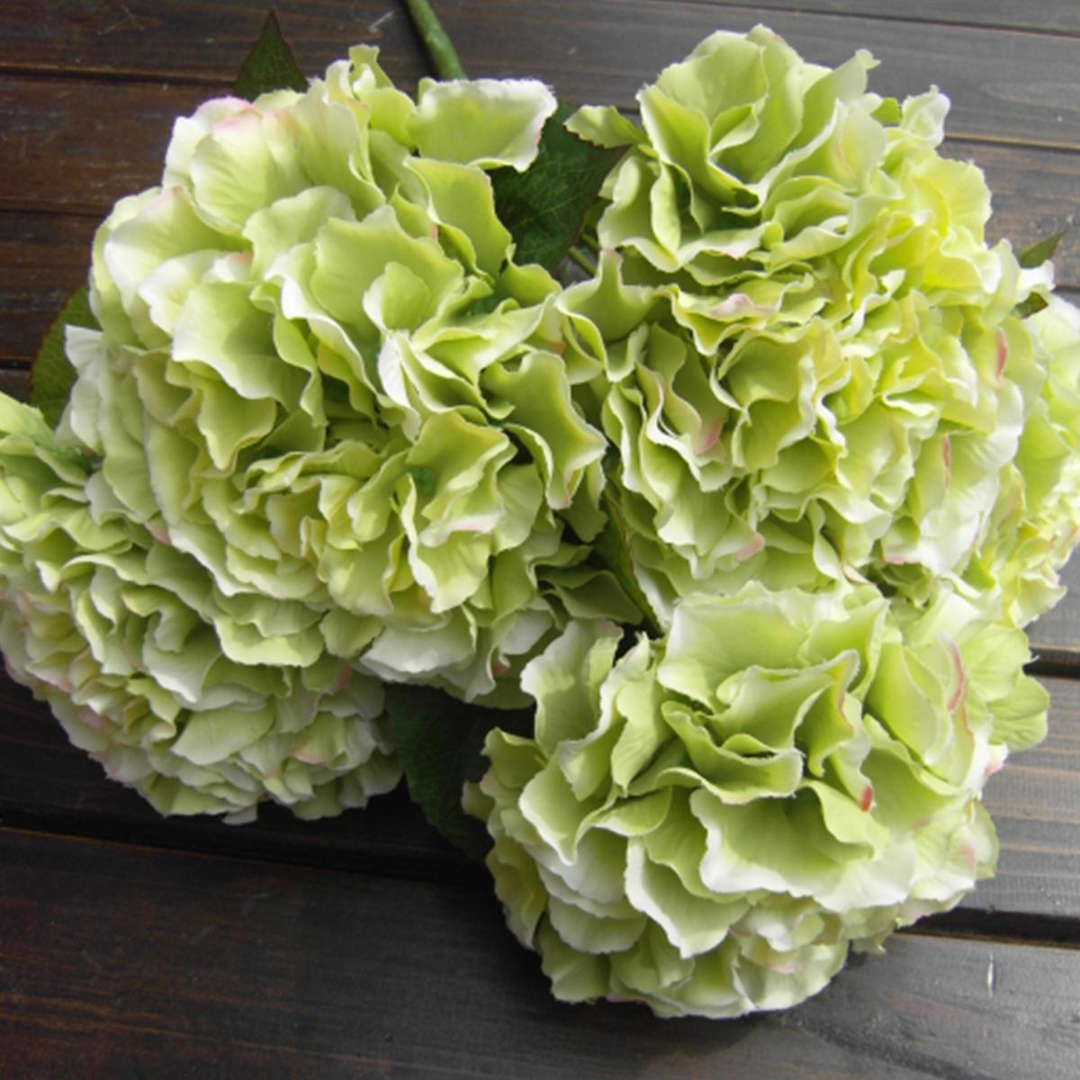 Green artificial silk hydrangea 5 flower heads bouquet home wedding decor craft - Nature curiosity stressed out plants emit animal like signals ...