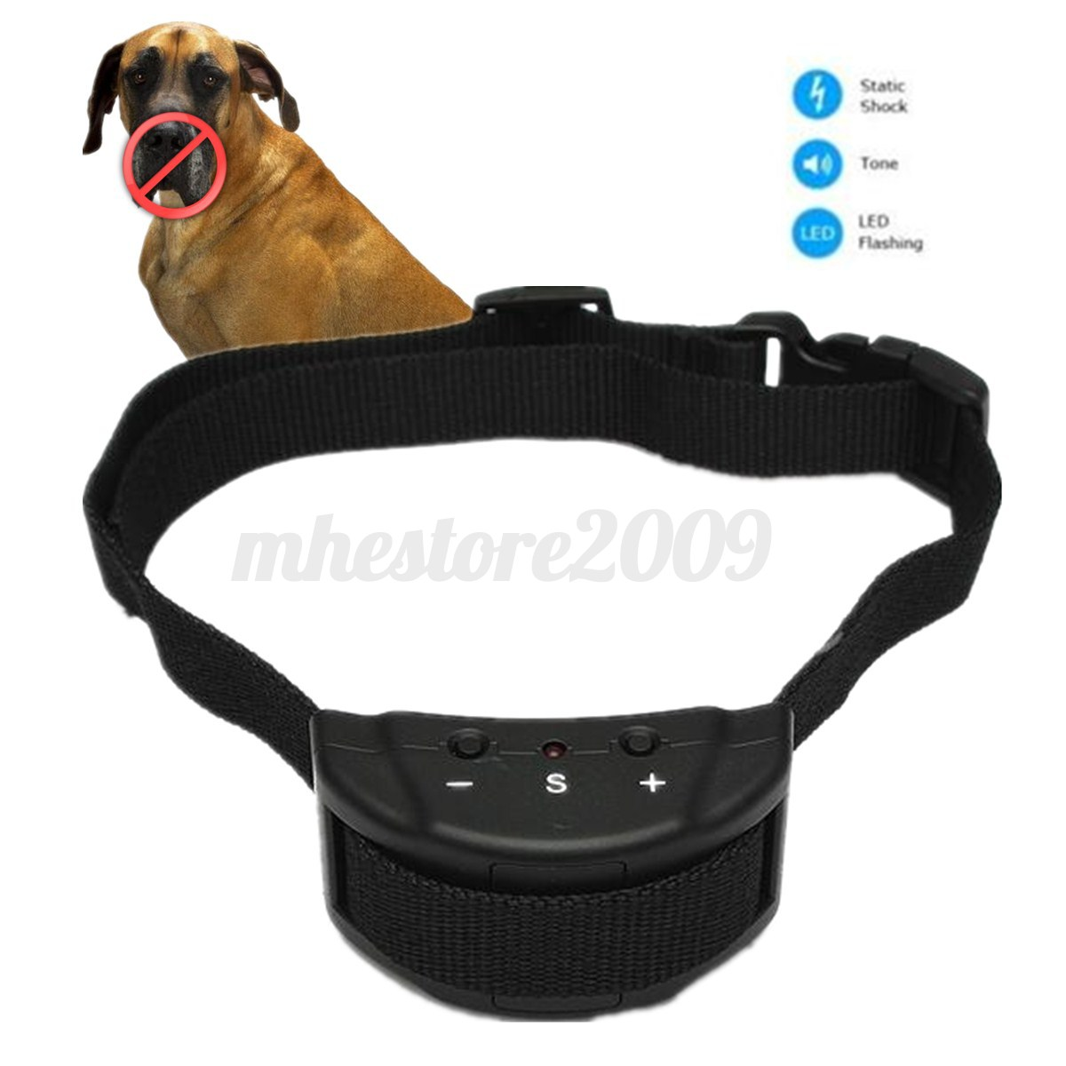 Clear E Collars Dogs