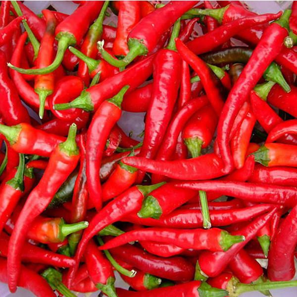 30pcs rouge graines de piment fort l gume plante potag re chili peppers seeds ebay. Black Bedroom Furniture Sets. Home Design Ideas