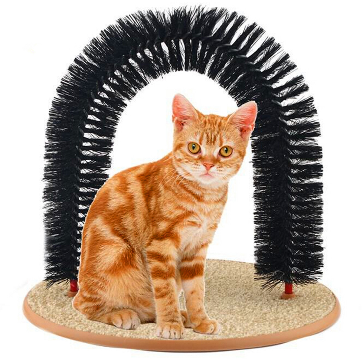 Pet Cat Arch Bristles Self Groomer Massager Scratcher