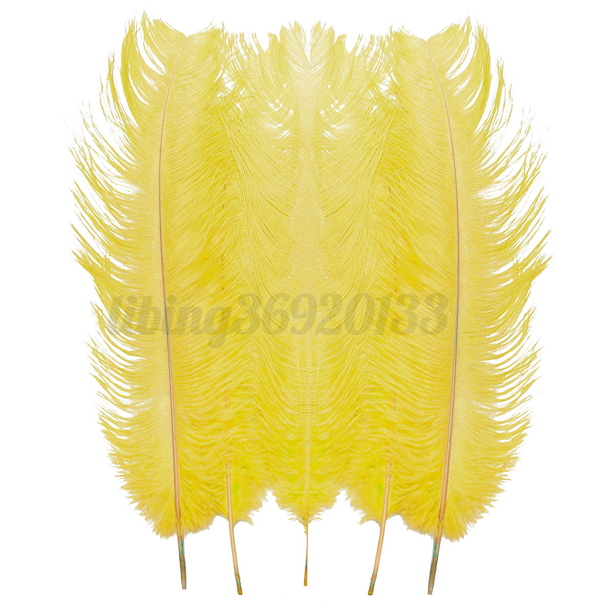 5 10pcs natural large ostrich feathers for craft wedding for Natural feathers for crafts