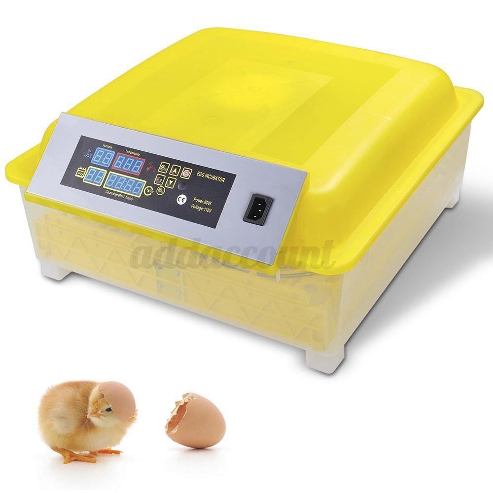 Инкубатор для 1 яйца