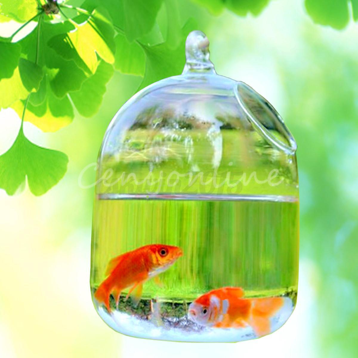 Hydroponic wall hanging bubble aquarium fish glass vase for Hydroponic aquarium with fish