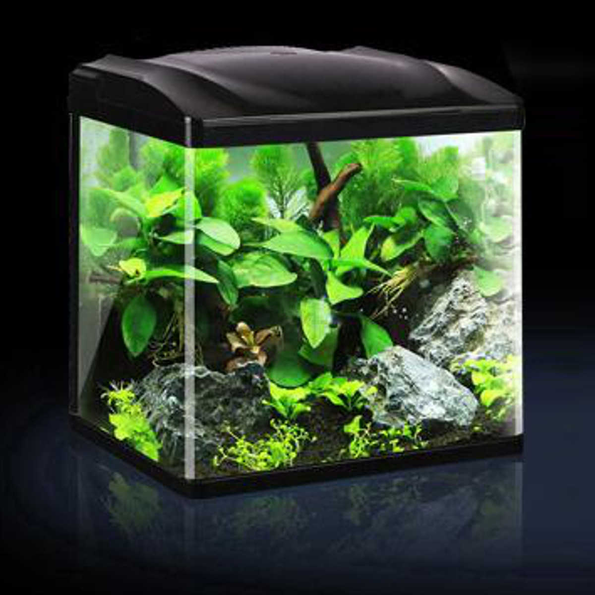 Led set mini aquarium fish tank en verre poisson ornement for Decoration maison aquarium