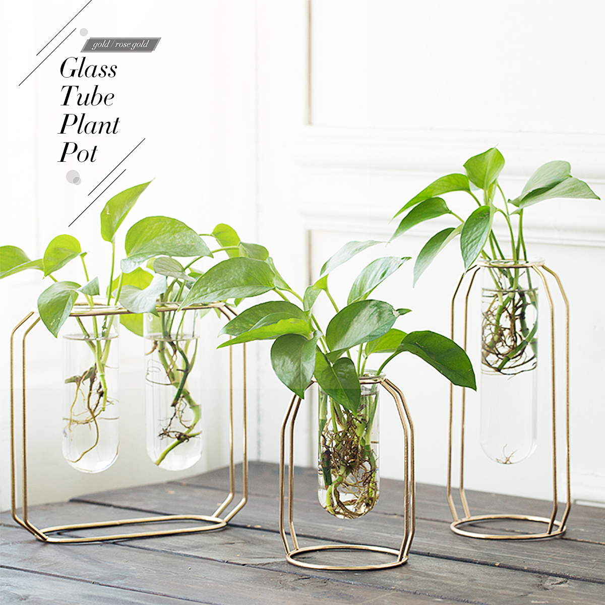 5pcs Clear Glass 12cm Flowers Plant Vase Holder Terrarium with Iron Stand