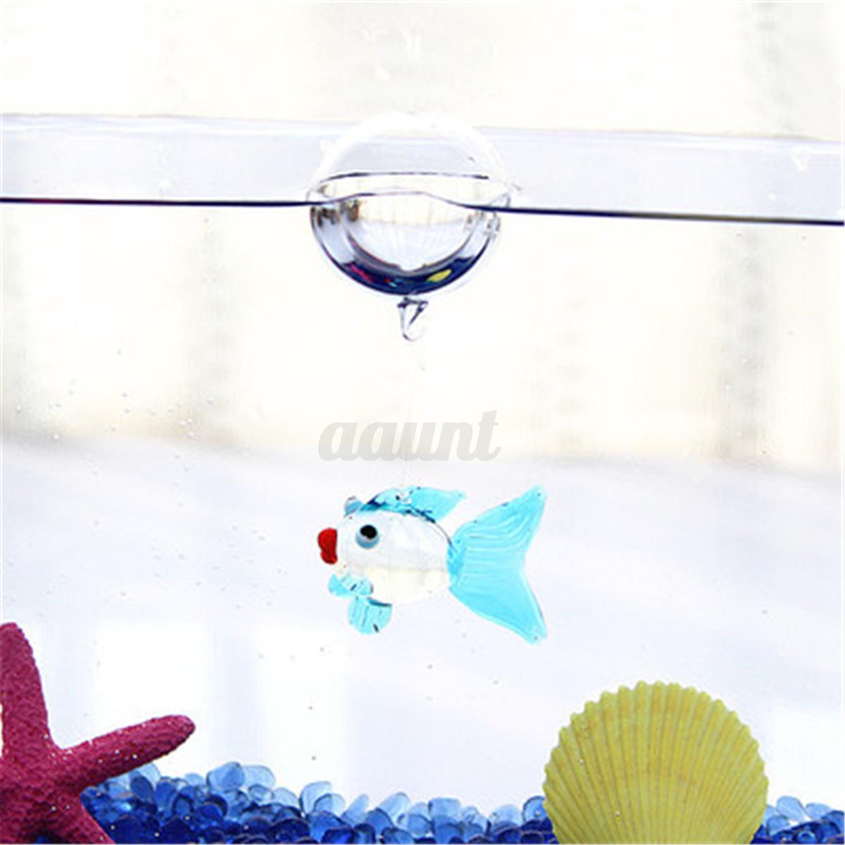 Aquarium floating blown glass bubble micro fish tank for Floating fish aquarium for pond