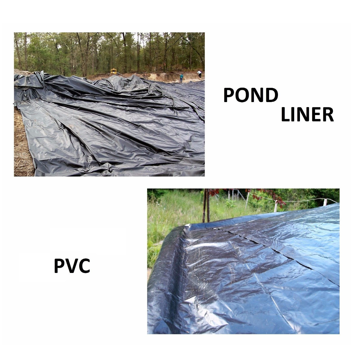 8 32ft sizes fish pond liner gardens pools pvc membrane for Koi pond size