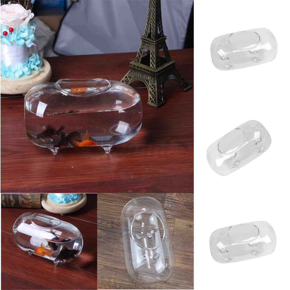 18cm oval glass vase fish tank jar ball bowl planter for Aquarium vase decoration