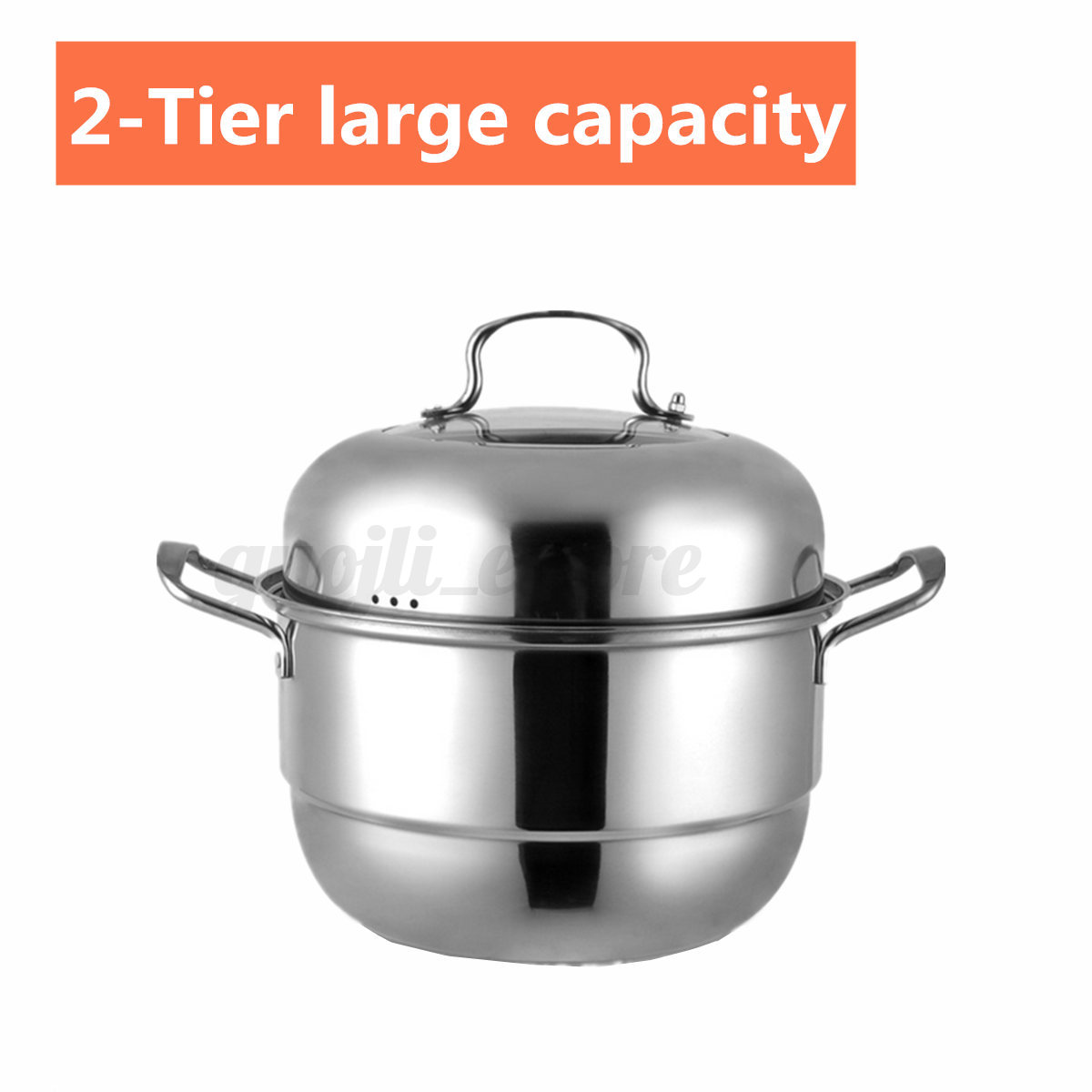 2 Tier Stainless Steel Food Vegetable Steamer Pot Induction Kitchen Multi