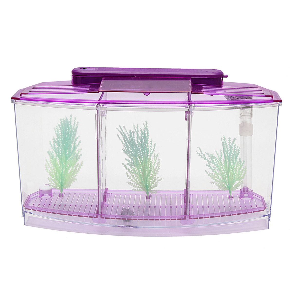 Led light triple cube betta aquarium box separate breeding for Betta fish light