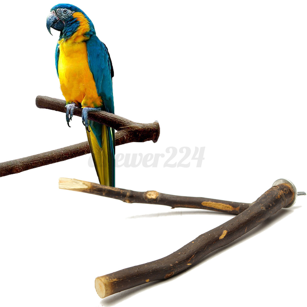 Very Impressive portraiture of Wooden Fork Bird Cage Perches Parrot Stand Pet Parakeet Budgie Hanging  with #C1810A color and 1200x1200 pixels