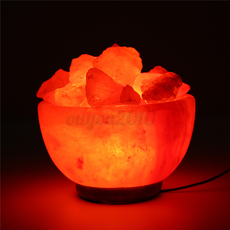 Himalayan Glow Hand Carved Natural Crystal Salt Lamp w/ Dimmer Switch 1-15Kgs