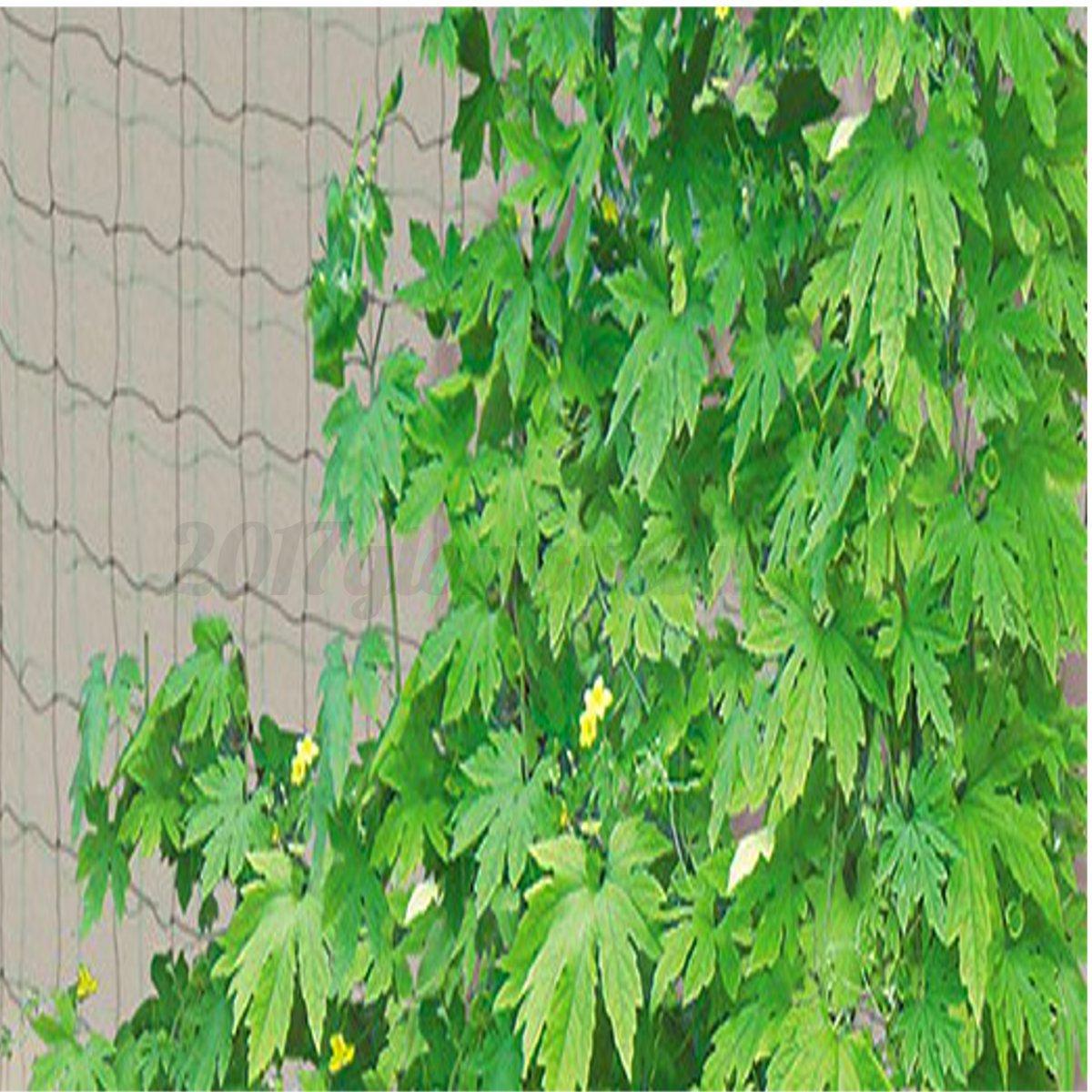 1st Grün Gartennetz Netz Garten Gemüse Pflanzen Net Mesh Schutz ...
