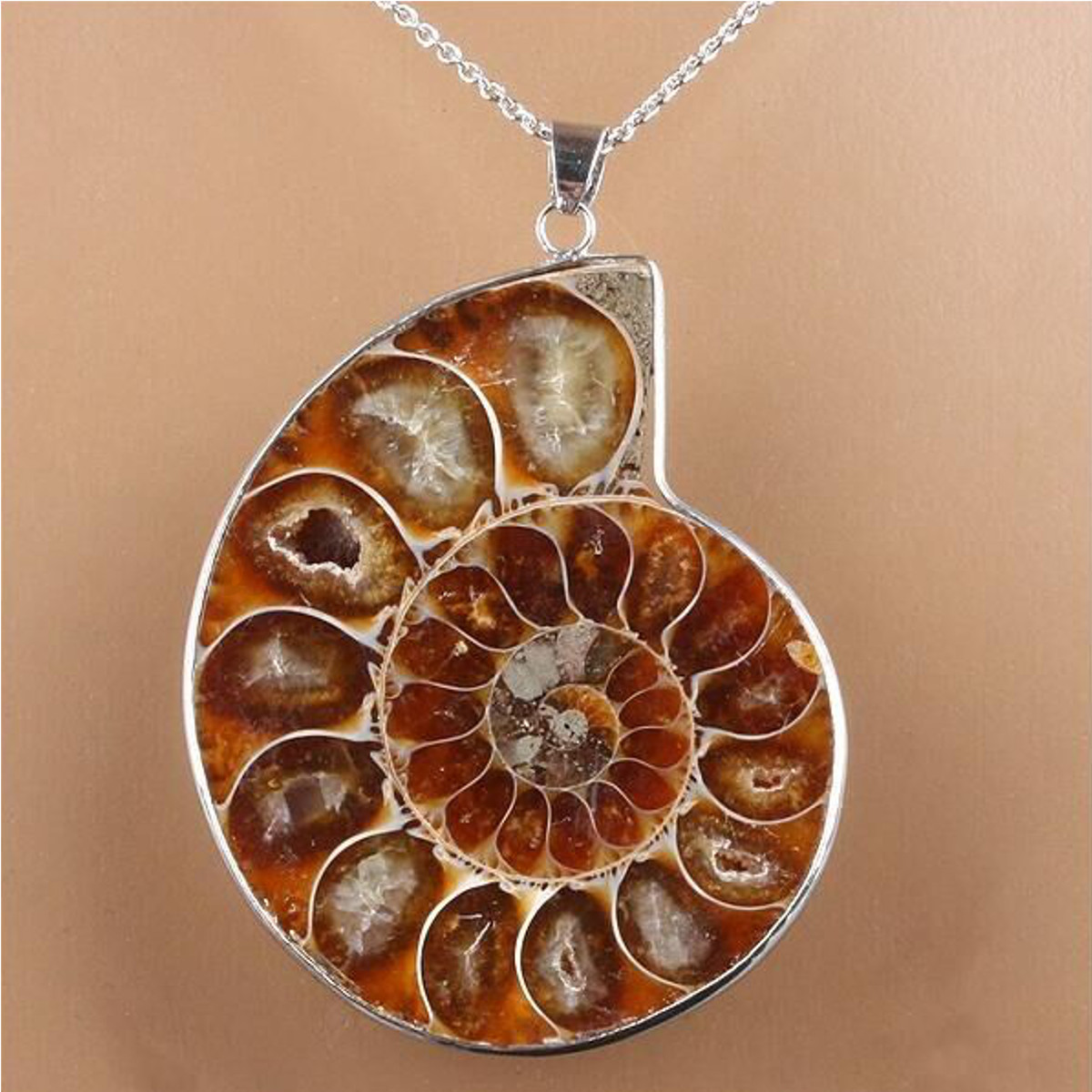 Hot madagascar sea nautilus ammonite shell chain gemstone pendant hot madagascar sea nautilus ammonite shell chain gemstone pendant for necklace ebay aloadofball Images
